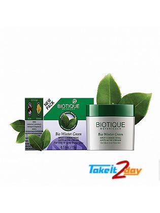Biotique  Bio Winter Green SPOT CORRECTING ANTI-ACNE CREAM