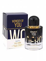 Riiffs Wonder Of You Pour Homme Perfume For Men 100 ML EDP