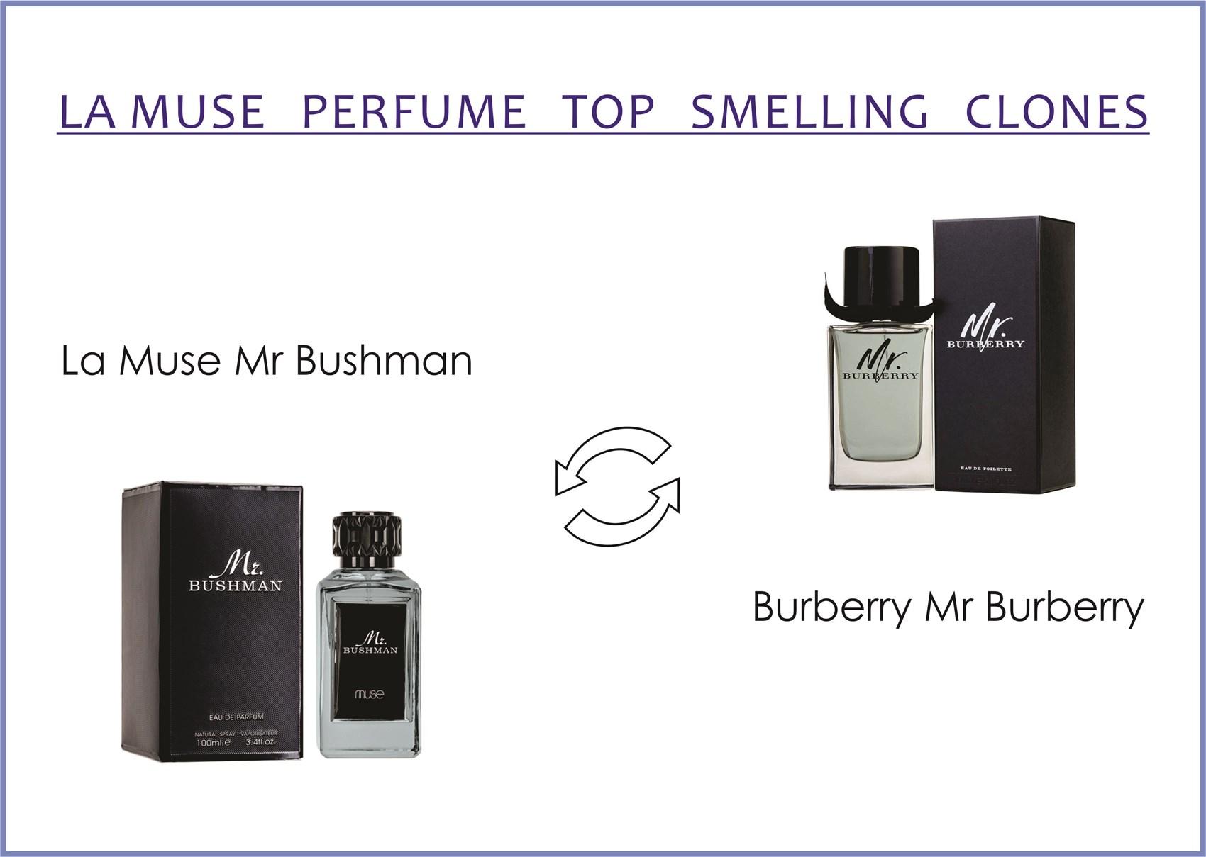 la-muse-mr-bushman-for-men-100-ml-edp-by-lattafa-perfumes-burberry-mr-burberry-indigo-perfume-for-men-100-ml-edt